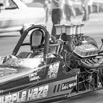 Doug Gordon in the Gordon and Best Purple Haze dragster