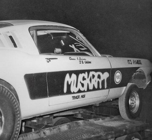 Muskrat Mustang